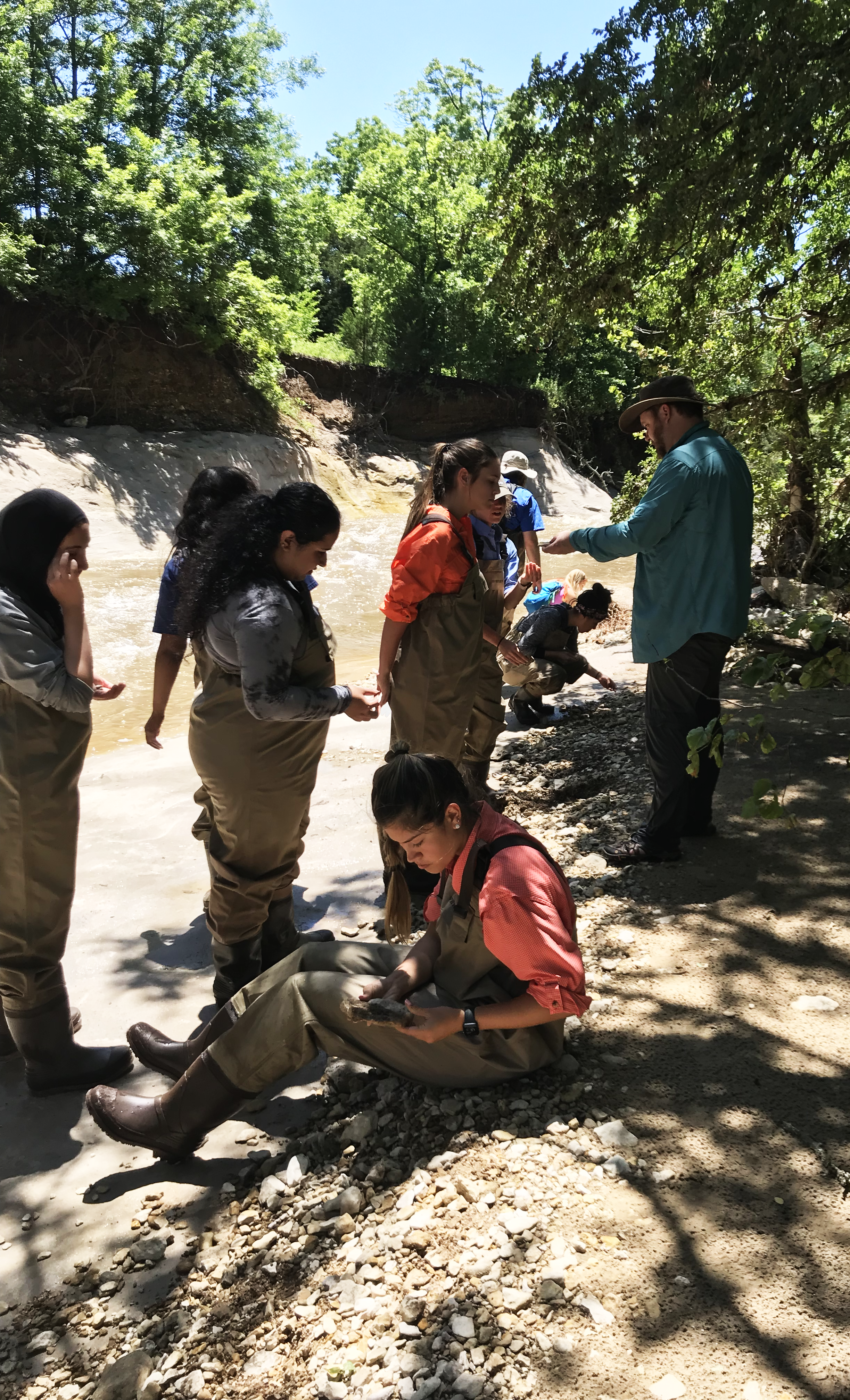 students looking for specimen in a creek